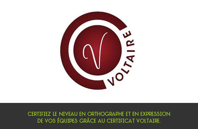 Slide 11 Projet Voltaire pour les entreprises
